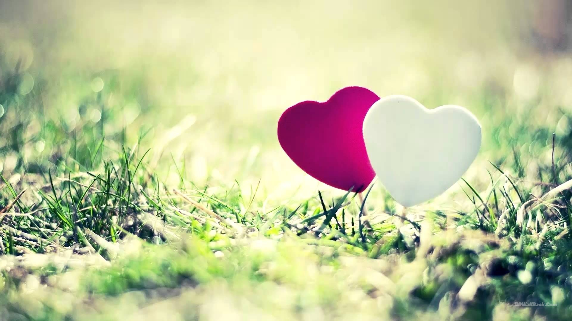 Love Background HD Wallpapers Free Download