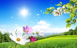 background images nature spring hd