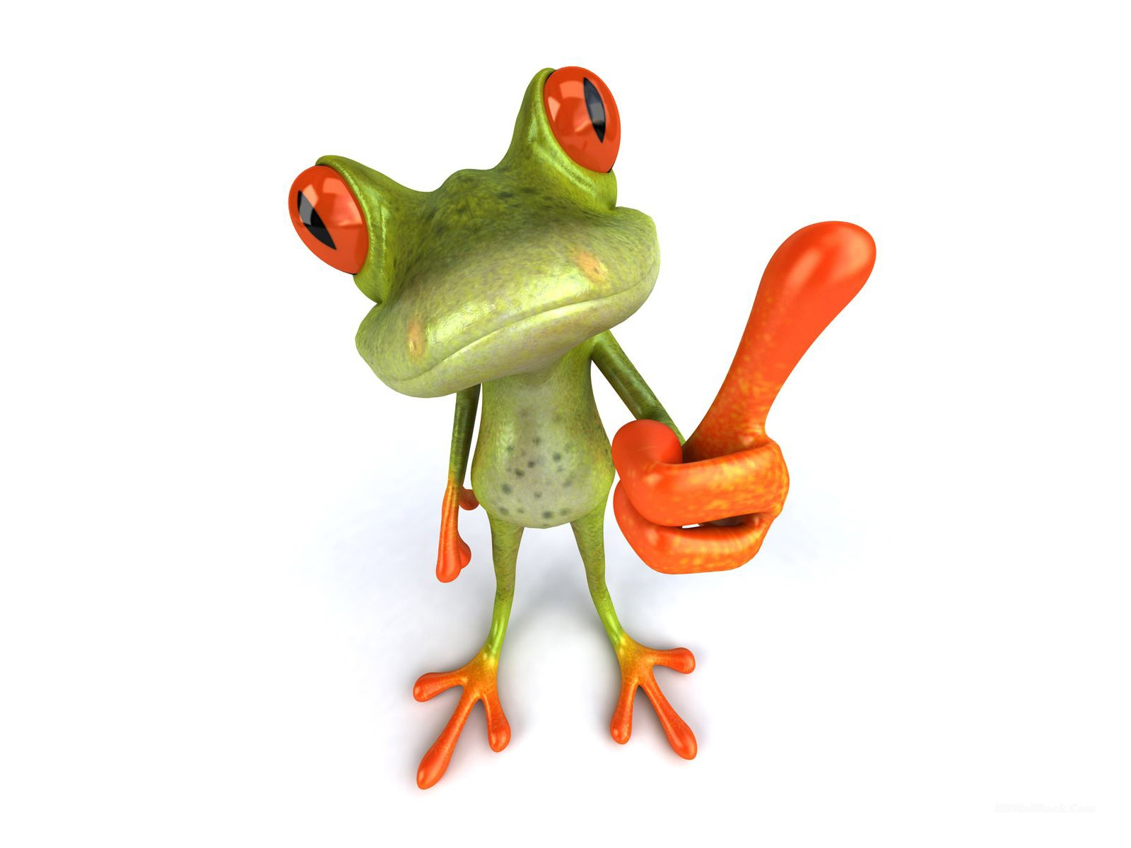 3D Funny Frog Animals Wallpapers