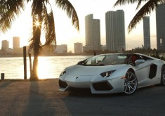 Lamborghini Aventador Roadster wallpaper
