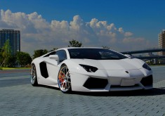 Lamborghini Aventador White wallpaper