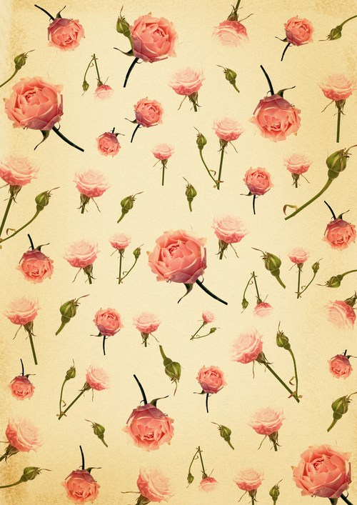 tumblr backgrounds rose