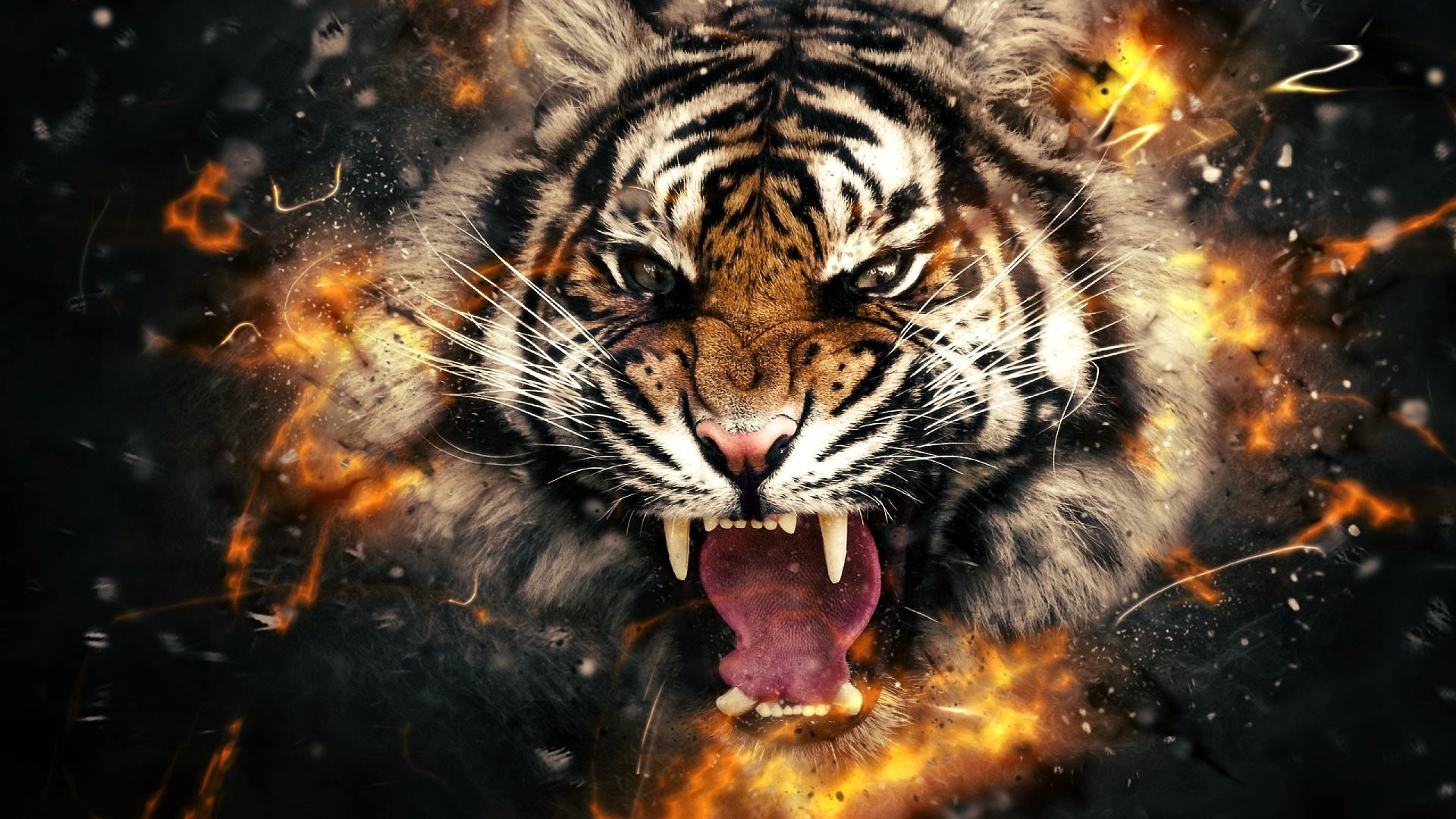 3D 4k Tiger Wallpaper