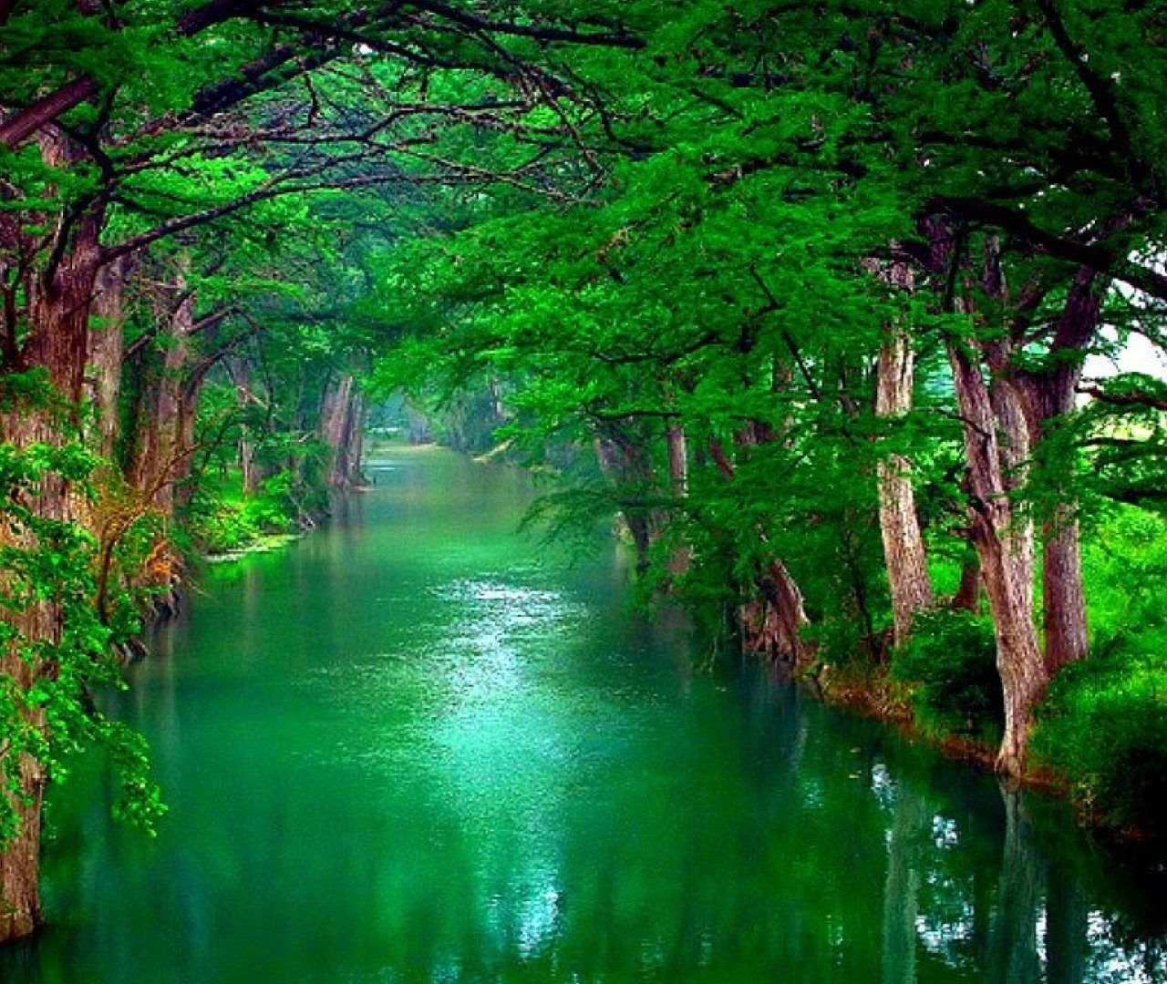4k nature wallpapers - HD Wallpapers , HD Backgrounds ...