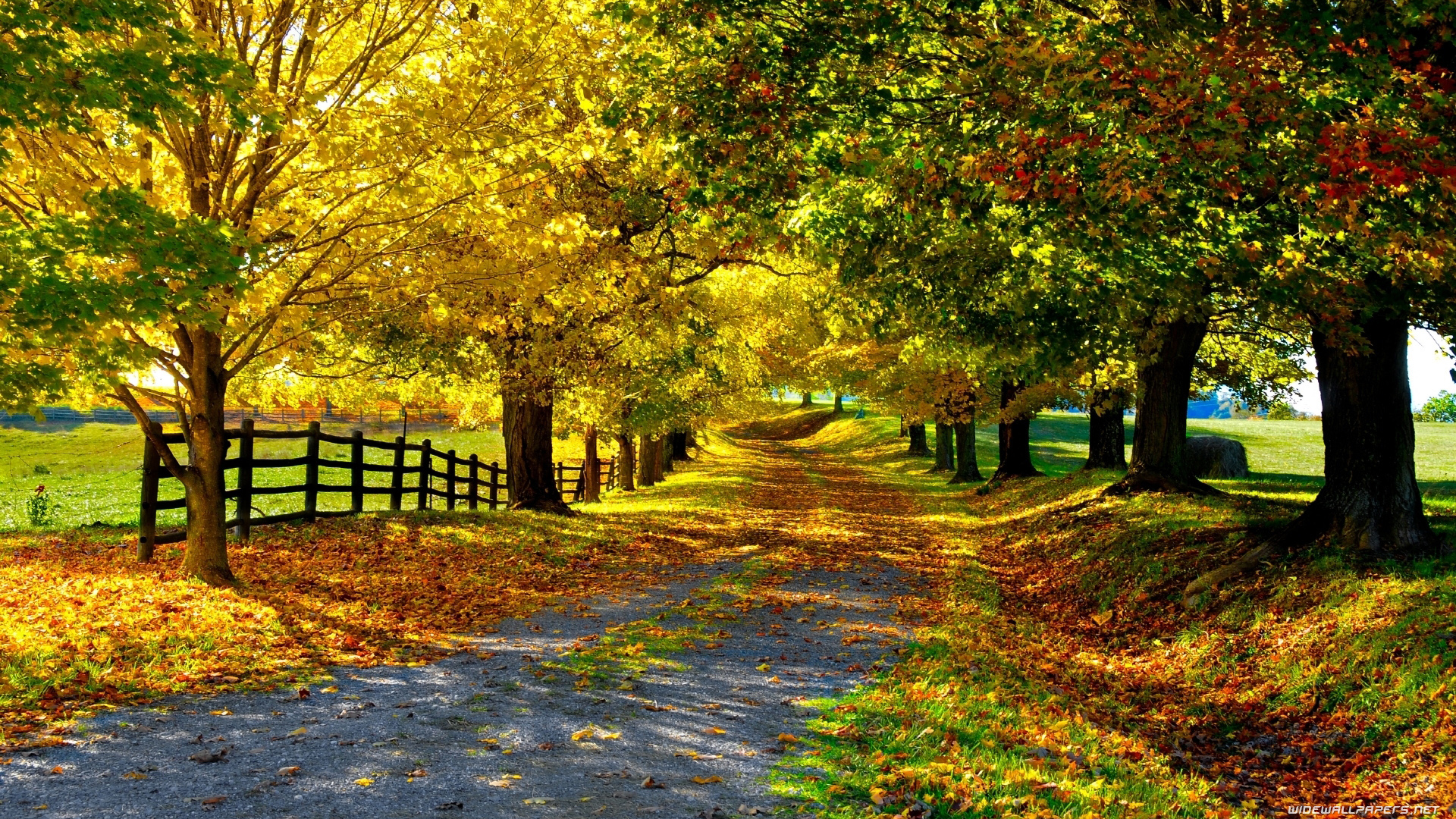 nature wallpapers high definition