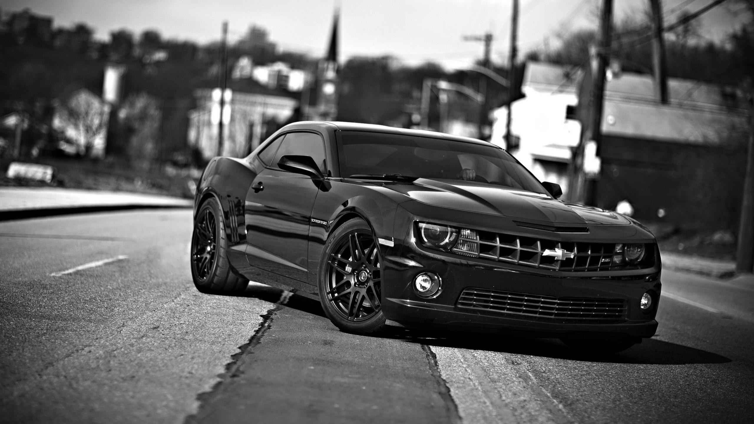 chevrolet camaro chevrolet cars front view black white