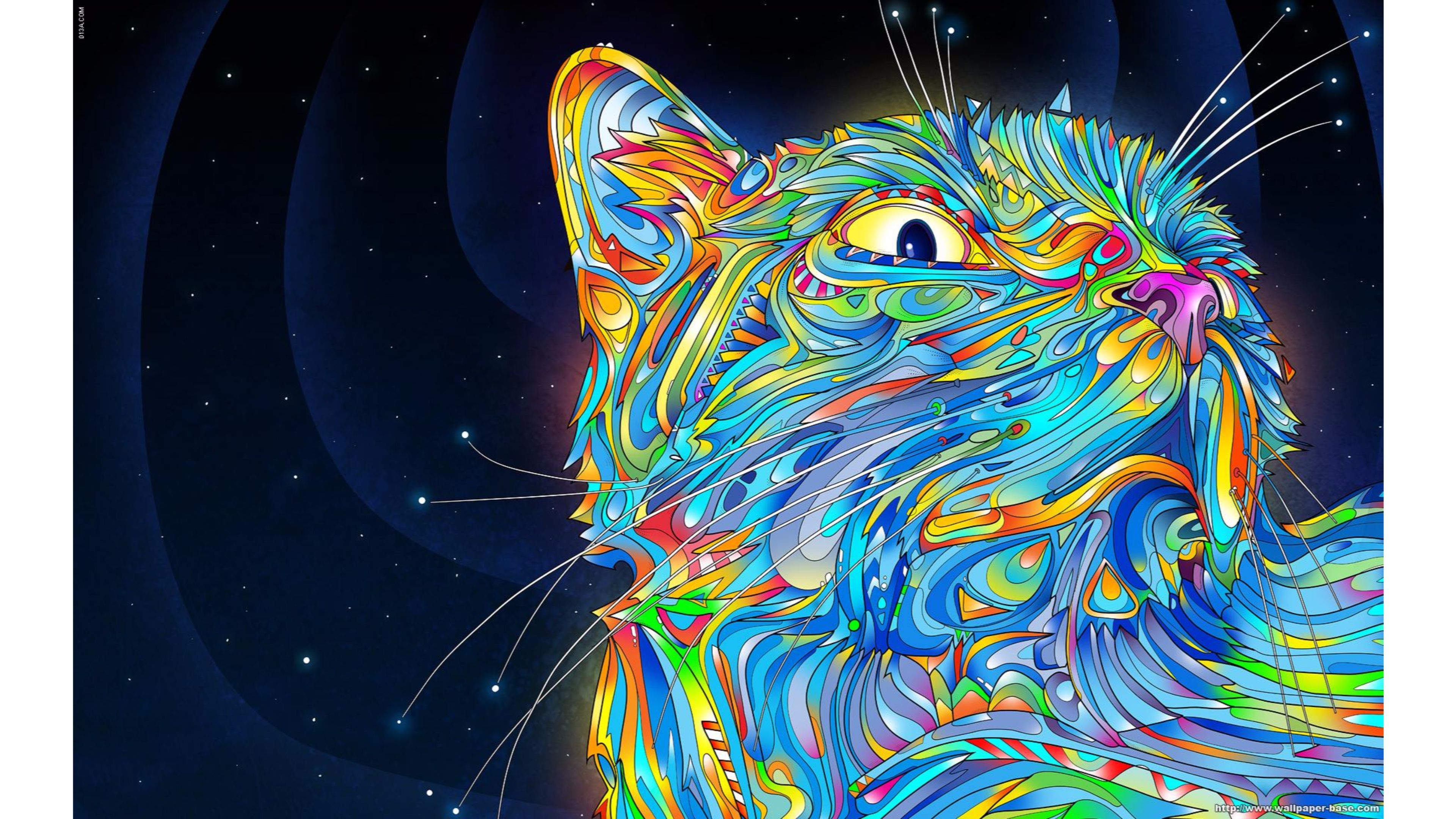 wallpapers abstract 4k wallpaper cool cat
