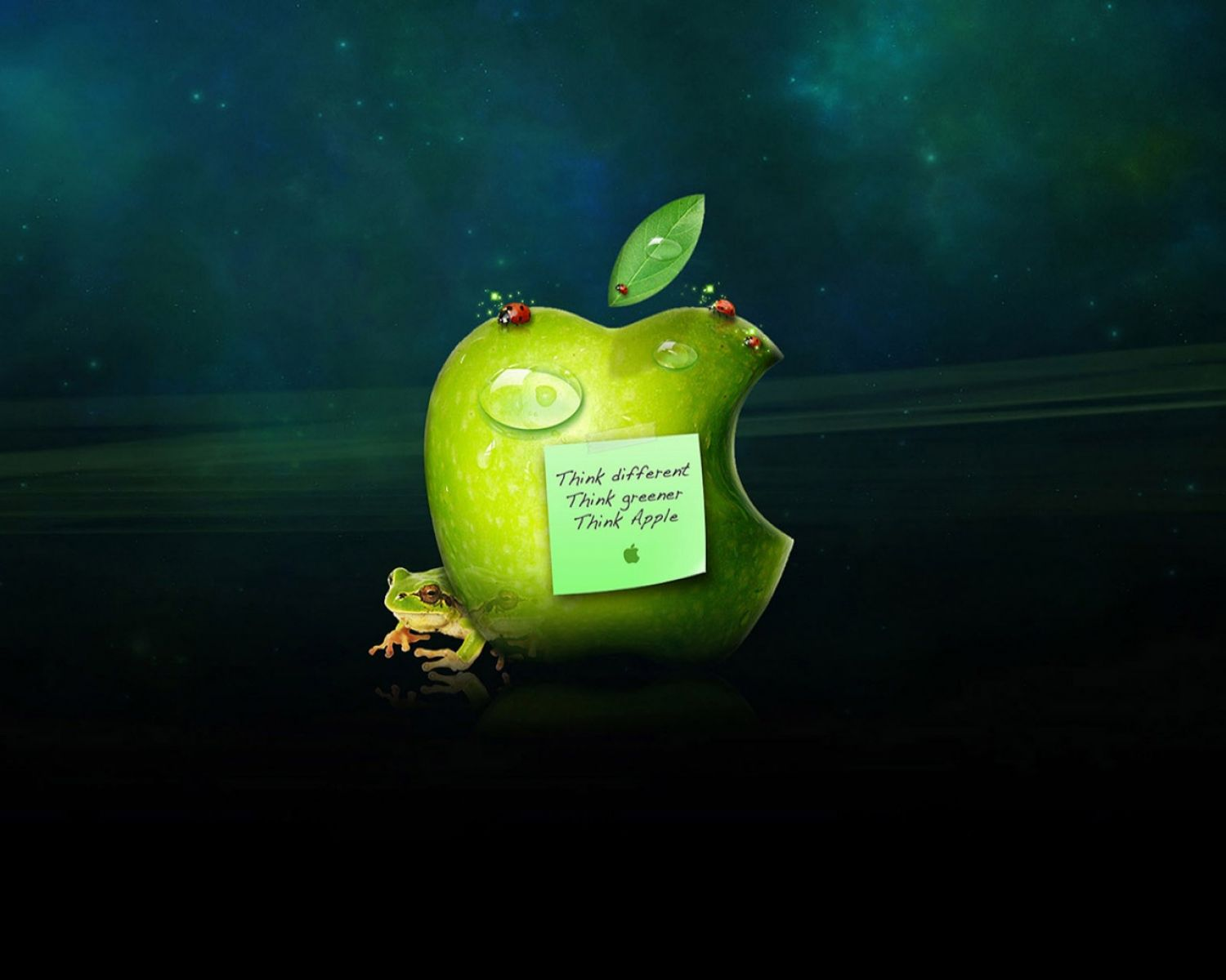 wallpapers apple 4k different green apple wide