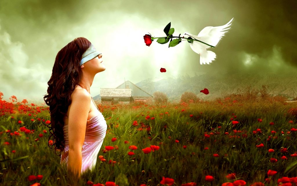 blind love top hd wallpapers cool background 1024×640