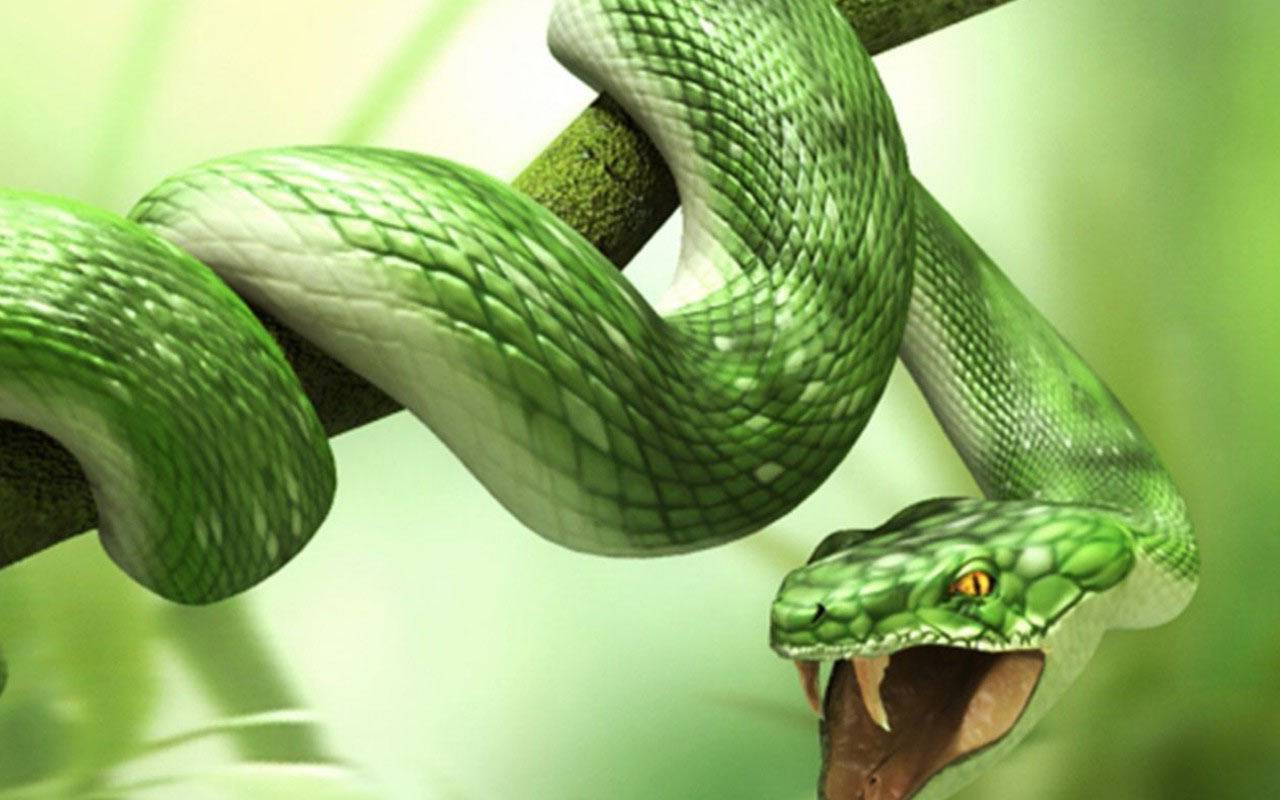 3D Snake Animals Wallpapers   HD Wallpapers , HD ... Vintage Nature Tumblr Backgrounds