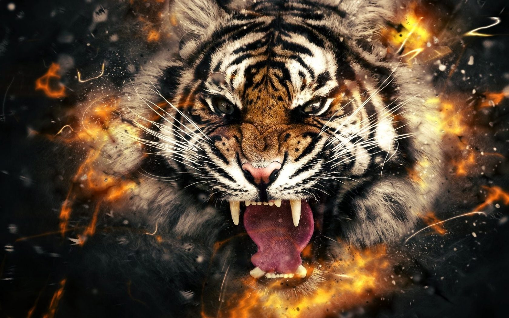 HD 3D HD  , Tiger | Backgrounds Wallpaper Wallpapers 4k