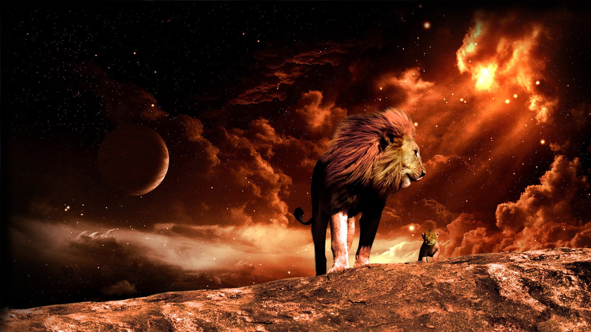 Black Lion Hd Wallpapers Hd Backgrounds Tumblr Backgrounds Images Pictures