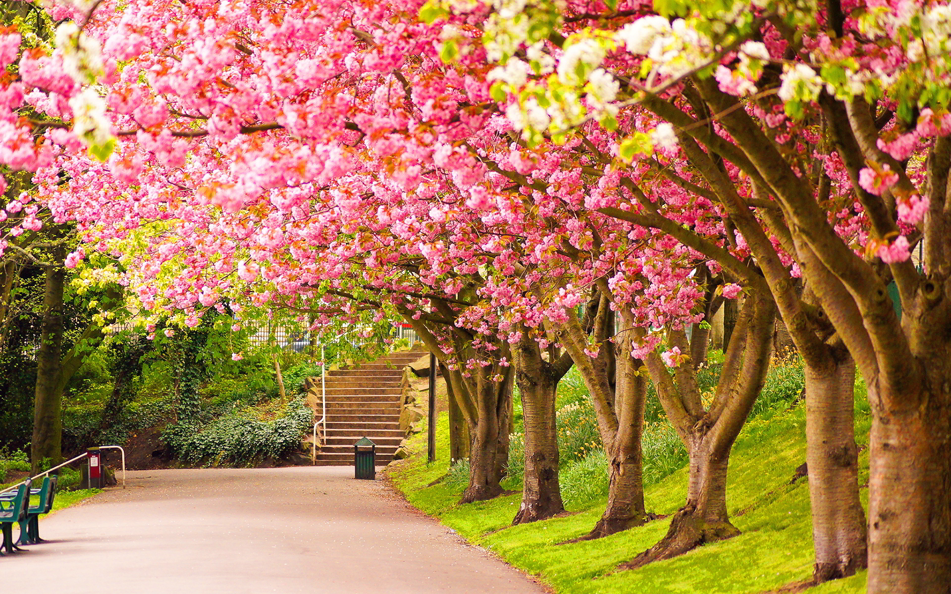 spring hd free wallpapers for tumblr hd wallpapers hd