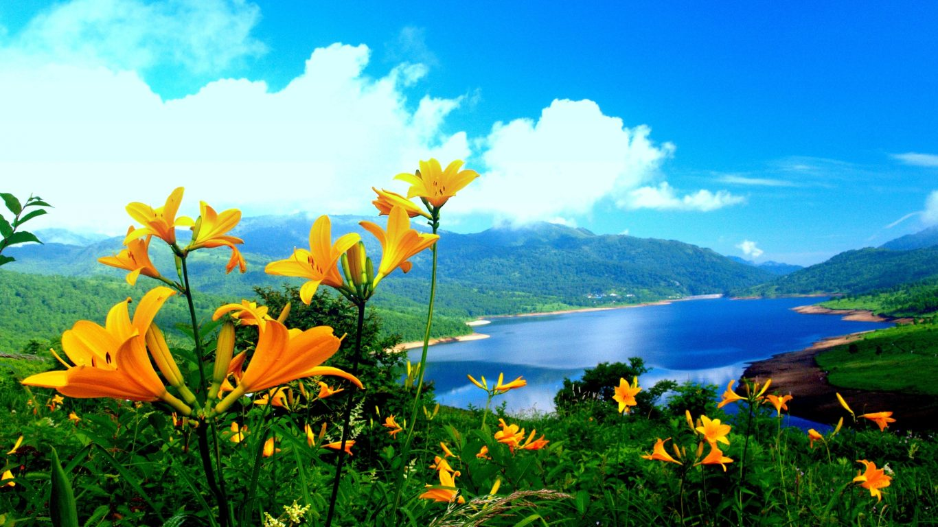 beautiful nature wallpapers hd wallpapers hd