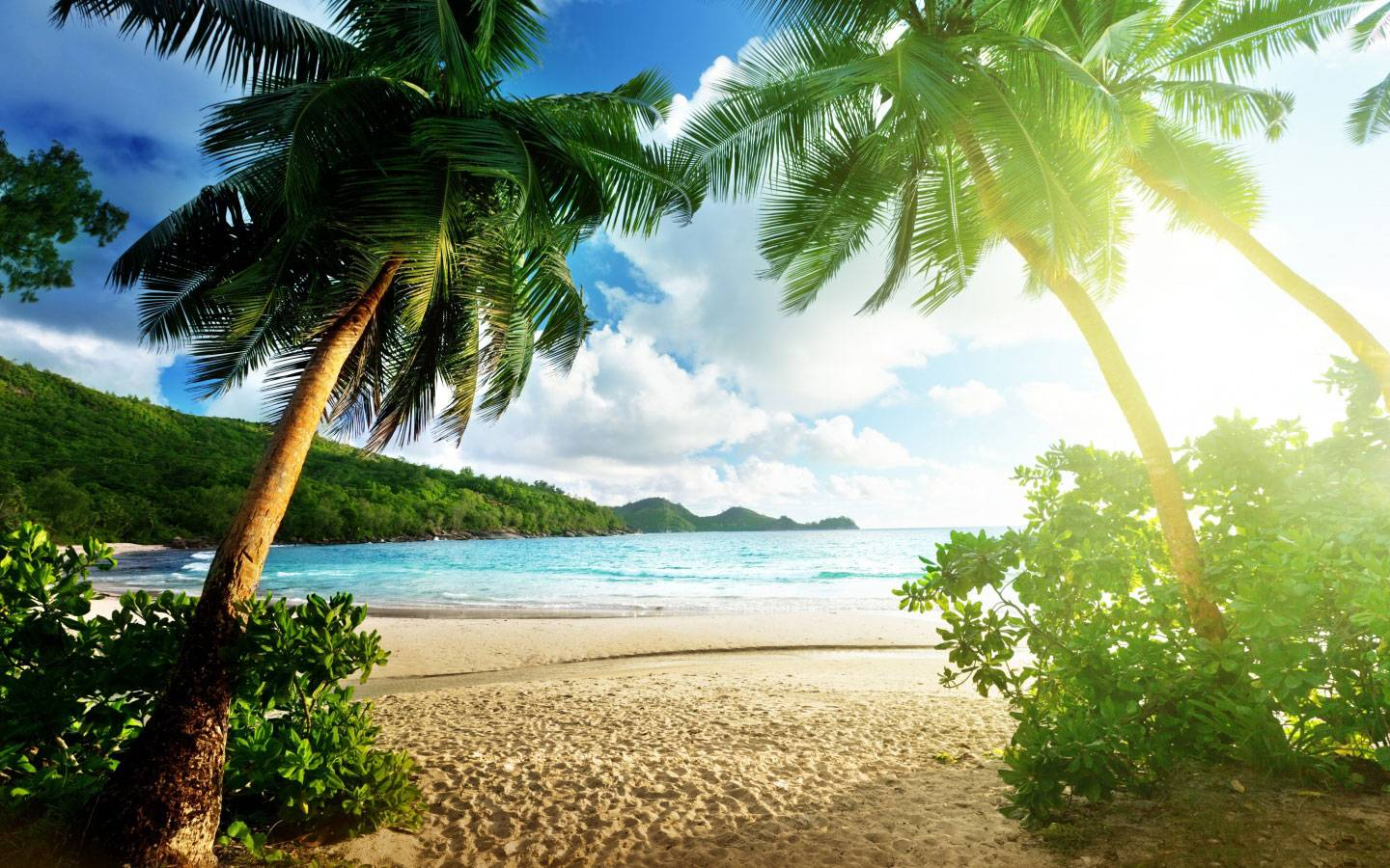 exotic islands nature wallpaper