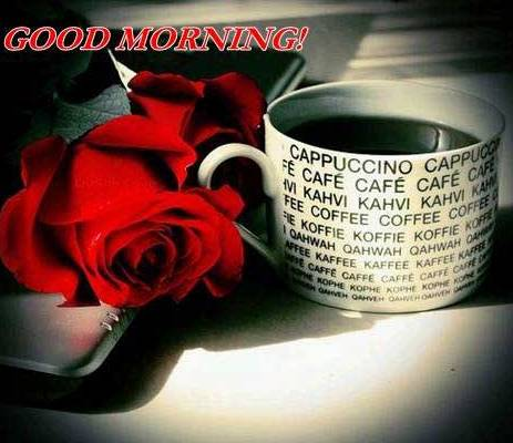 cool good morning greetings pics