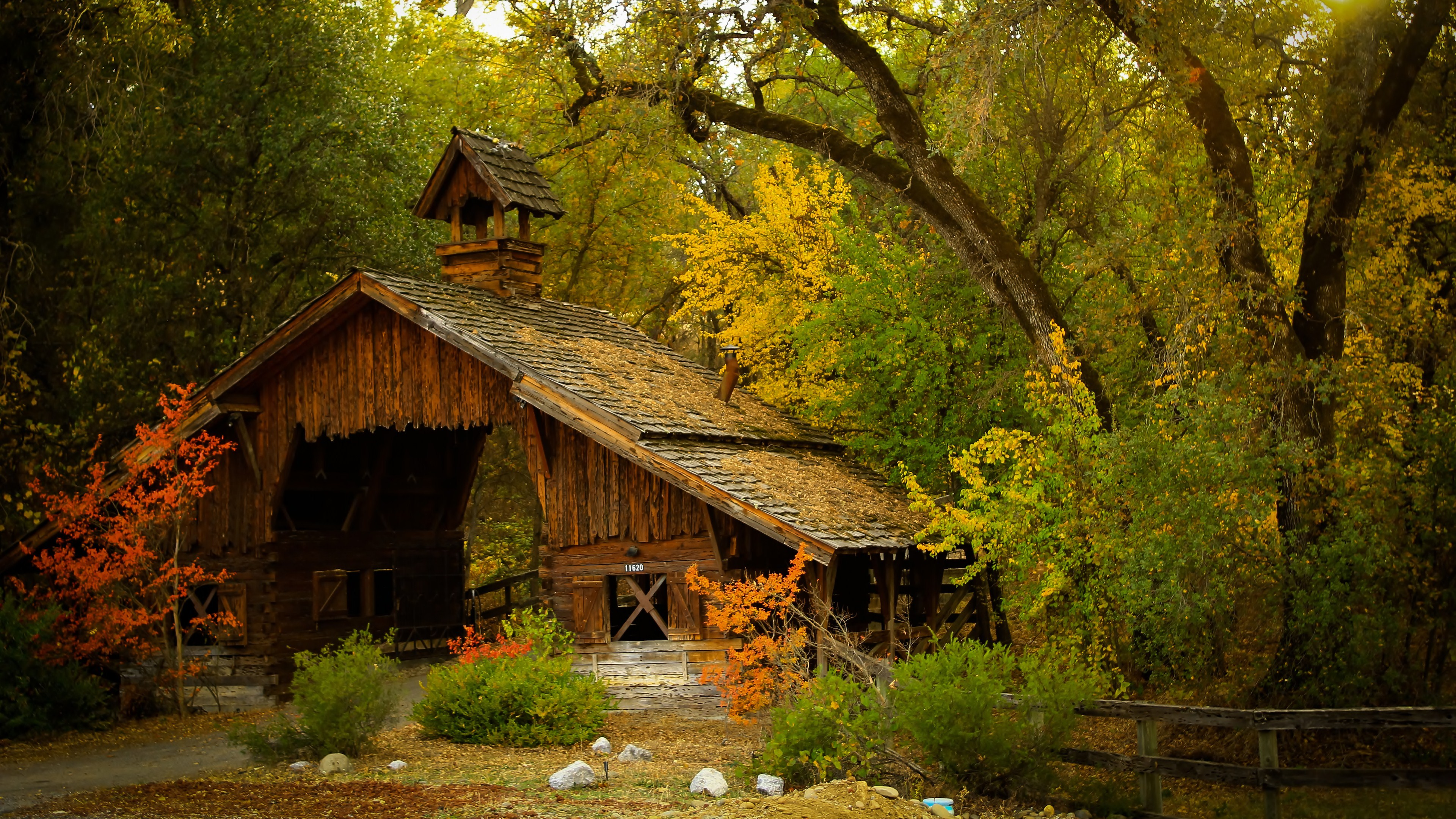 4K High Definition Nature Beautiful House in Forest